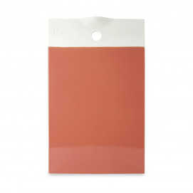 Color Lab capucine orange cheese board 2 sizes